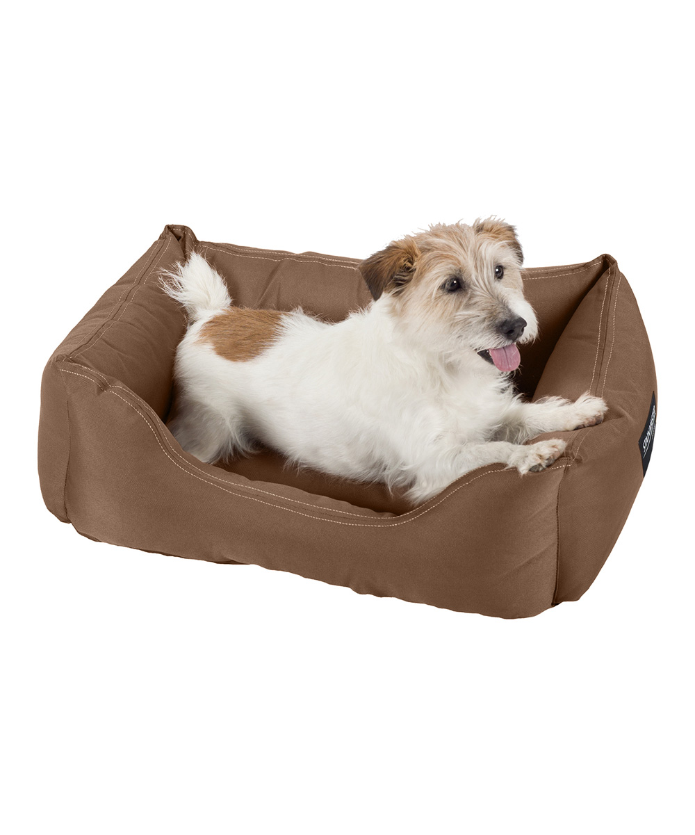 Stainmaster Chocolate Brown Stainmaster Comfy Couch Pet Bed Zulily