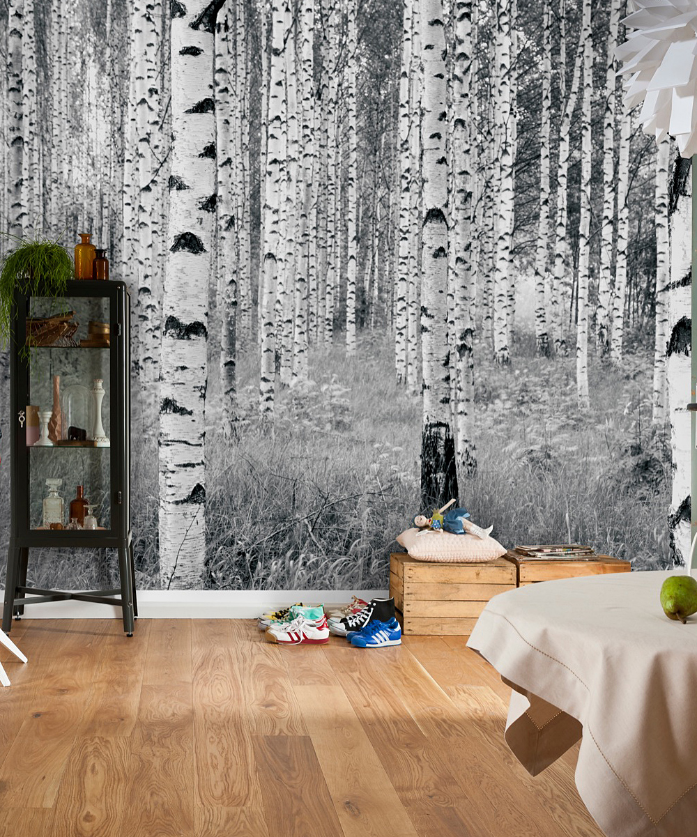 Brewster home fashions woods wall mural zulily for Brewster home fashions wall mural