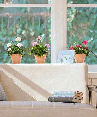 Pink Geranium Window Decal Set