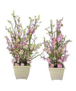 Cherry Blossom Arrangement - Set of Two